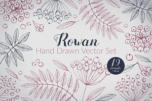 Hand Drawn Rowan Vector Set