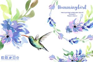 Hummingbird watercolor clip art