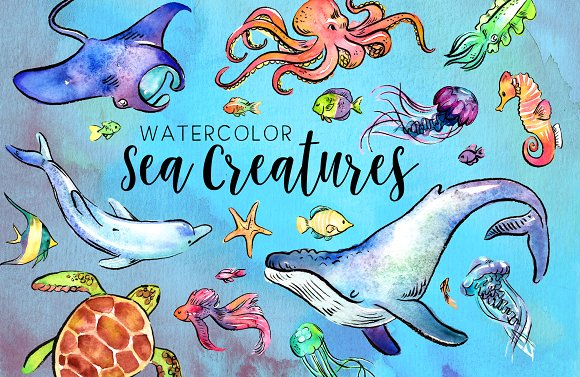 27 Watercolor Sea Creatures
