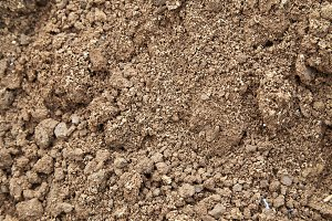 Ground agriculture Organic