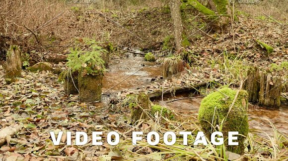 Broken Wooden Bridge On The Forest River Autumn Daytime Smooth Dolly Shot