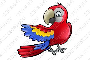 Parrot Bird Cartoon Character
