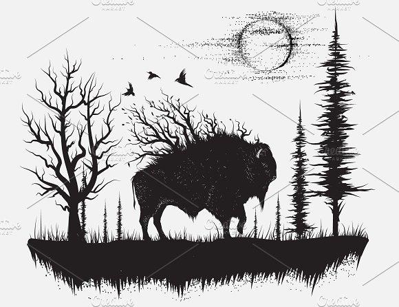 Buffalo In Forest