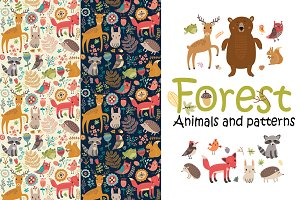 Forest. Animals and patterns