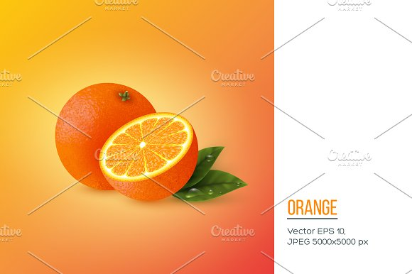 Realistic orange with leaves.