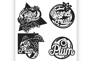Color vintage fruit emblems