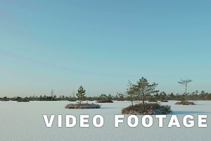 Islands of tree in the frozen lake. Clean and frosty daytime. Smooth dolly shot