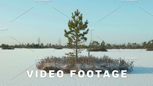 Islands Of Tree In The Frozen Lake Clean And Frosty Daytime Smooth Dolly Shot