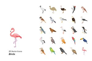 Birds color vector icons