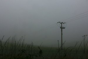 Electicity pole in foggy field
