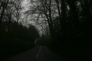 Eerie road into foggy wood
