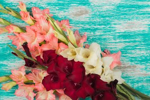 Bouquet of light pink, white and red Gladiolus