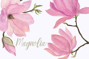 Watercolor Magnolia
