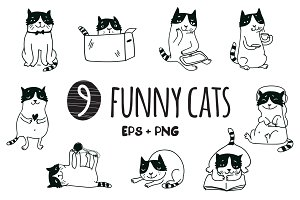 9 funny cats