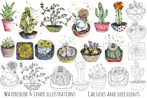 Cactuses watercolor pen illustration