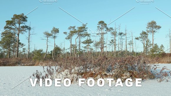 Island Of The Dried Grass Clean And Frosty Daytime Smooth Dolly Shot