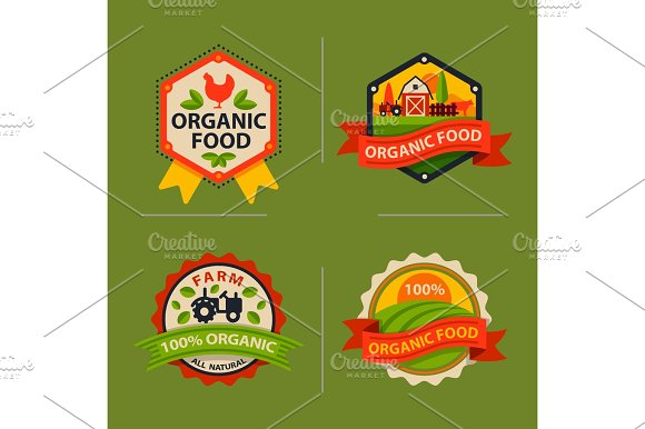 Flat Style Of Bio Organic Eco Healthy Food Label Logo Template And Vintage Vegan Farm Element In Orange Green Color Badge Vector Illustration