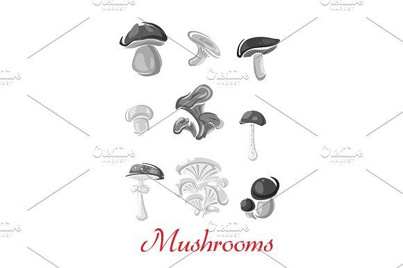 Mushrooms Champignon Chanterelle Vector Icons