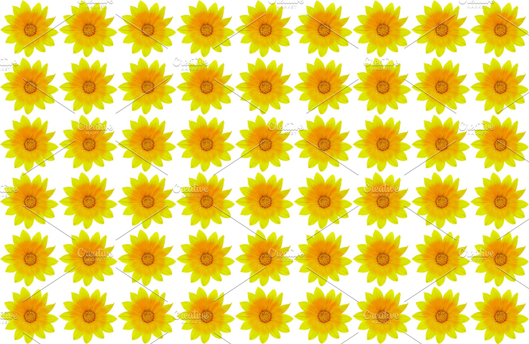 Seamless Yellow Flower Background High Quality Nature Stock