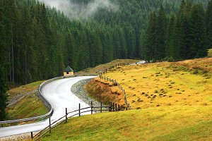 Free winding mountain road