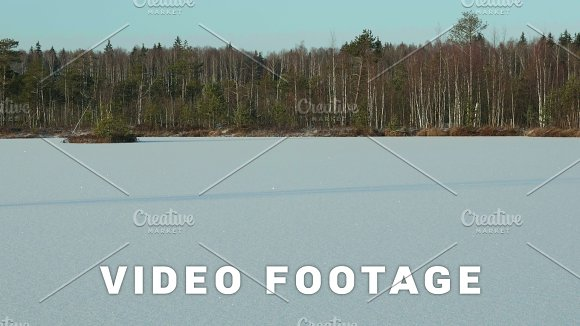 Winter Forest On The Frozen Lake Clean And Frosty Daytime Smooth Dolly Shot