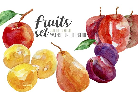 Watercolor Fruits Hand Painted