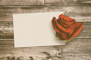 Vintage greeting card and rose