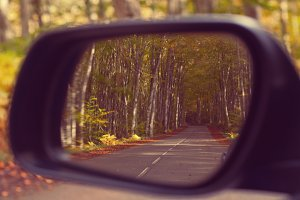 Car rearview. Beautiful autumn trees
