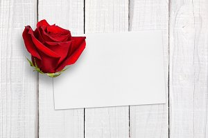 Greeting card and red rose
