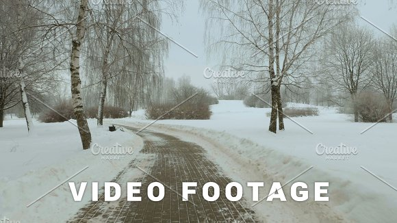 Walking In The Winter Park Frosty Daytime Used Professional Gimbal Stabilazer