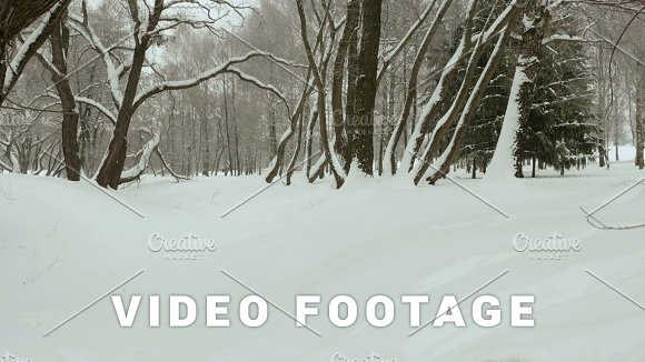 To The Top Of The Trees Used Professional Gimbal Stabilazer