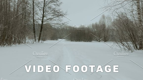 Winter Footpath In The Park Used Professional Gimbal Stabilazer