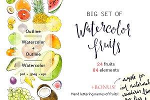 Big set of watercolor fruits