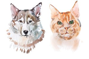 Watercolor painting, red-headed cat and dog aquarelle drawing.