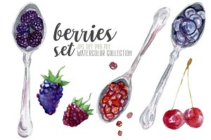 Watercolor berries hand drawn