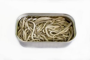 Can of preserved eels