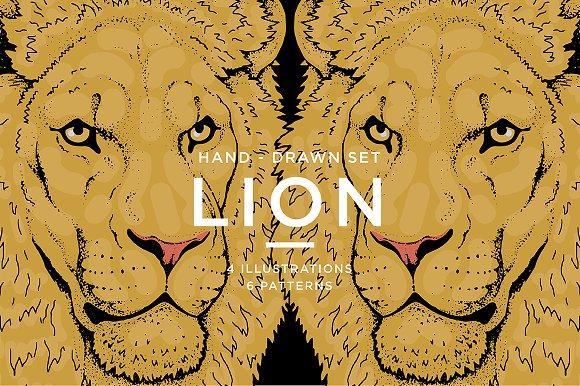 LIONS Set