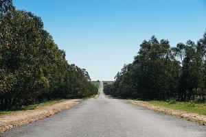 Empty asphalt road.
