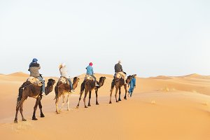 Tourist people ride on dromedary.