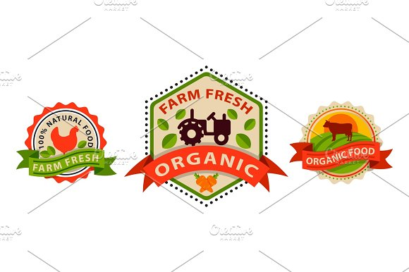 Flat Style Of Bio Organic Eco Healthy Food Label Logo Template And Vintage Vegan Farm Element In Orange Green Color Badge Vector Illustration