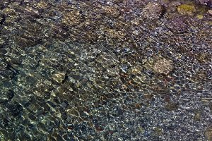 Underwater stones.