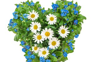 Forget me not flowers Mothers Day