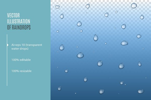 Realistic Raindrops Vector Water