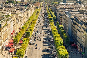 Champs elysees boulevard in Paris