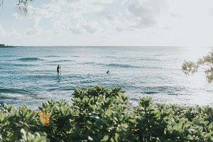 Paddle Boarding in Hawaii