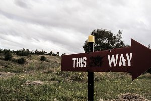 This Way Signage