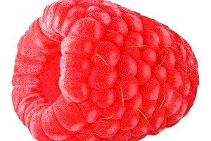 One raspberry isoalted on white