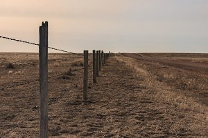 Vertical Country Road/Fence