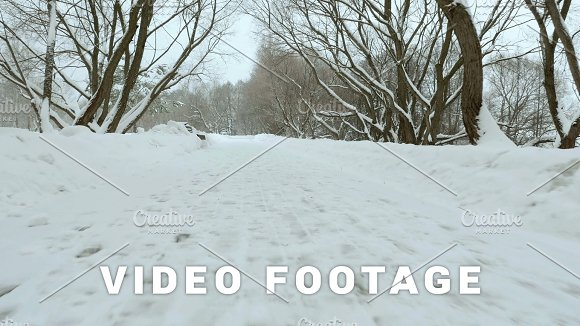 Fast Flying In The Winter Forest Used Professional Gimbal Stabilazer