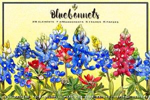 Bluebonnet Watercolor Clip Art
